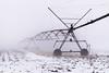Fog Day #2 (tquist24) Tags: indiana nikon nikond5300 farm fog foggy geotagged irrigation rural snow sprinklers winter