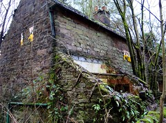 Naturally Reclaimed. Jan 2018 (SimonHX100v) Tags: derelict urban decay ruins ruin abandoned untidy depressed dereliction neglected deserted desolate broken damaged ruined shattered moss damp graffiti shiningcliffwoods ambergate derbyshire unitedkingdom uk england english greatbritain gb britain british eastmidlands january january2018 winter winter2018 simonhx100v sonydschx100v sonyhx100v hx100v sonycybershotdschx100v derby