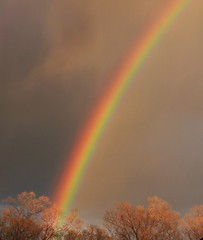 A rainbow appeared a few minutes before sunset tonight. (Ruby 2417) Tags: sunset rainbow davis california color clouds rain shower storm