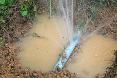 Water pipe break,  leaking from hole in a hose,selective focus (Community Water Center (CWC)) Tags: water pipe leak leaking burst plumbing break pipes repair leakage damage hose hole damaged industrial equipment pressure industry tube liquid drop waste flow splashing tubing piping waterworks leaks construction background save environment outdoor grass loss garden park agriculture flowing wet conservation main supply fire spray isolated nature thailand
