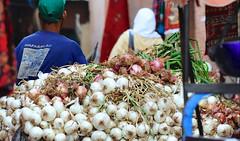 2011 -06 Trip to Marrakech152 (Phytophot) Tags: marrakech spices souk onions donkey smileonsaturday roundandround