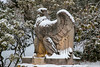 samsebeskazal-2133.jpg (samsebeskazal) Tags: winter newjersey ringwood pennsylvaniastation eagle botanicalgarden