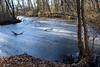 Nella palude del lago di Candia (STE) Tags: candia palude inverno winter ghiaccio ice