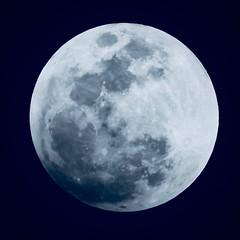 P1010384 (digitalbear) Tags: total lunar eclipse seen from tokyo japan panasonic lumix g9 pro gvario 45200mm f456 powerois