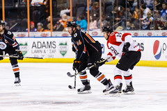 """Kansas City Mavericks vs. Cincinnati Cyclones, February 2, 2018, Silverstein Eye Centers Arena, Independence, Missouri.  Photo: © John Howe / Howe Creative Photography, all rights reserved 2018. • <a style=""""font-size:0.8em;"""" href=""""http://www.flickr.com/photos/134016632@N02/39219889105/"""" target=""""_blank"""">View on Flickr</a>"""