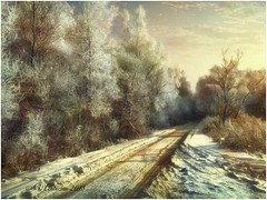 Winter forest. (odinvadim) Tags: winter iphoneart iphoneography iphoneonly distressedfx forest evening snapseed painterlymobileart textures travel frost artist textured landscape