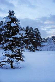 Snow in Colorado!