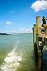 Pahi Wharf  (1) GIF - Open in original size (C & R Driver-Burgess) Tags: teen young boy girls leap jump harbour wharf sea kaipara brother sister girlfriend nephew niece son daughter shorts halter top green blue clear sky sunny summer splash