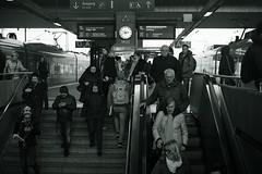 2:50pm@Central station, Düsseldorf (Amselchen) Tags: station düsseldorf streetphotography mono monochrome city germany passengers sony a7rii alpha7rm2 zeiss carlzeiss sonnart1855 sonnar5518za sonyilce7rm2 fe55mmf18za