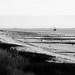 Zoutelande - Dunes