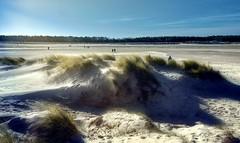 Sun and wind (Colin-47) Tags: sunlight wind dunes island holkham northnorfolk uk 2018 winter february sand beach grasses sky people colin47 canon eos6d ef2470mmf4lisusm