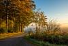 Last Autumn (impossiblejoker) Tags: herbst autumn nebel dunst morgens morning mist landschaft landscape landstrasse countryroad nikon