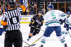"""Kansas City Mavericks vs. Florida Everblades, February 18, 2018, Silverstein Eye Centers Arena, Independence, Missouri.  Photo: © John Howe / Howe Creative Photography, all rights reserved 2018 • <a style=""""font-size:0.8em;"""" href=""""http://www.flickr.com/photos/134016632@N02/39676853494/"""" target=""""_blank"""">View on Flickr</a>"""