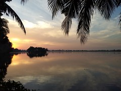 Reflection (Abraham Jacob N) Tags: reflection sunset puthernkaripaddyfield parippu kottayam kerala india motog5plus nature sky