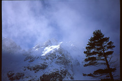 """Pátria"" (Boldizsár Nádi) Tags: 35mmfilm 35mmcamera 35mmphotographer 35mmphotohraphy photographersontumblr originalphotography yashica t3 tessar f28 agfa precisa ct 100 slide film filmphotography filmcamera filmgrain analogcamera analogphotography analog analogphotohrapher analogue analogvibes celluloid snow ice ridge berg steigen bergsteigen climbing mountainclimbing alpinism alpinist mountaineering ascending landscape clouds horizon valley tatry tatras hightatras vysoketatry patria peak sun lensflare cloudy sky pines pinetree pine"