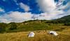Ready! (Alessandro Iaquinta) Tags: hoya canon eos landscape tent friends colours mountain dslr italy summer 2017 nature sky landscapephoto 5dmarkiii fullframe bestshot lens