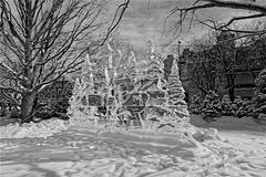 Bandabi and/et Soohorang sculpture (GEMLAFOTO) Tags: baldeneige winterlude sculpture snow neige ice glace