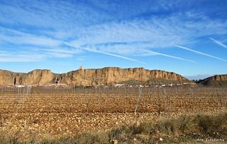 Las viñas y el pueblo