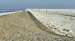 Neuharlingersiel im Eis (antje whv) Tags: neuharlingersiel wattenmeer nordsee northsea eis ice winter