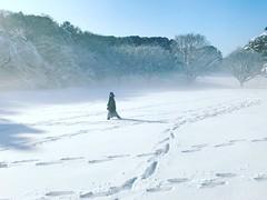 Tokyo Snow (kirainet) Tags: meijijingu snow tokyo 雪