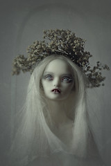 madonna (dolls of milena) Tags: bjd abjd resin doll art marmite sue angel egg butterly portrait