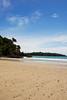 Beach life (GreenMtMan) Tags: nature beach phography new zealand nz