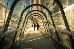 Paris 2018 - La Défense Japan Bridge (cesbai1) Tags: japan bridge la defense paris 75 92 ile de france architecture arch tunnel 2018 sony a7rm2