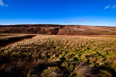 Out on the wild and windy moors..... (rustyruth1959) Tags: nikon nikond5600 sigma1020mm uk england yorkshire calderdale craggvale moorland moors landscape grass peat rocks stones sunshine outdoor bog sky alamy clouds heather brown blue