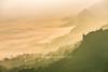 _Y2U1005.0118.Tà Lại.Mộc Châu.Sơn La (hoanglongphoto) Tags: asia asian vietnam noorthvietnam northwestvietnam landscape scenery vietnamlandscape vietnamscenery vietnamscene mocchaulandscape mountainous mountainouslandscape morning mist sunrise valley cloud flanksmountain canyon cloudvalley hdr canon canoneos1dx canonef70200mmf28lisiiusm tâybắc sơnla mộcchâu phongcảnh buổisáng bìnhminh sươngmù mây núi sườnnúi mâymộcchâu bìnhminhmọcchâu tàlại