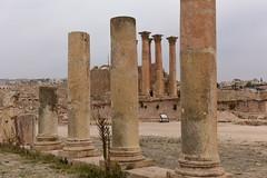 Jerash, Jordan, January 2018 304 (tango-) Tags: giordania jordan middleeast mediooriente الأردن jordanien 約旦 ヨルダン jerash