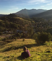 Feel like I'm just emerging from a valley. January hit me hard. (seanflannagan) Tags: valley marin marincounty mttamalpais mttam sweater life sananselmo fairfax upsanddowns