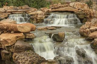Dallas Arboretum 50/365