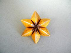 Carambola - Ekaterina Lukasheva (Rui.Roda) Tags: origami papiroflexia papierfalten modular flor fleur flower carambola ekaterina lukasheva