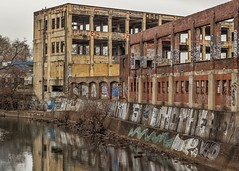 Edgewater Ruins (D. Coleman Photography) Tags: edgewater dyeing finishing company frankford creek lower northeast philly philadelphia torresdale avenue abandoned factory industry industrial ruins decay urban photography street streets blight cities city life gray grey gloomy overcast dreary rain