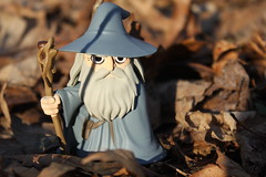 Gandalf the Grey (Doctor Beef) Tags: funko mysteryminis lordoftherings thefellowshipofthering toy collectible minifigure minifigures gandalfthegrey wizard