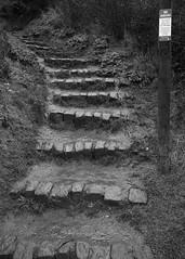 Scarborough  - Be Aware (Tony McLean) Tags: ©2018tonymclean scarborough leicamonochrom leica35summiluxfle landscape monochrome blackwhite northyorkshire