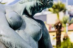 Locarno Palm Springs (Lepidoptorologic beauty*) Tags: locarno palm springs locarnopalmsprings pedrazzini fontana fontanapedrazzini palms palmen palmes nikon d7200 nikond7200