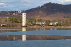 Frozen IV (3:45 pm) (agasfer) Tags: 2018 southcarolina greenville furman university swanlake winter canon g1xmk2 ice topaz adjust5