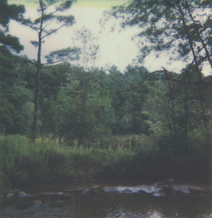 """Beyond the River (dreamscapesxx) Tags: instant polaroid theimpossibleproject """"polaroidspirit600"""" impossible600colorfilm bytheriver atthepark outforawalk overcast nature michigan polavoid snapitseeit"""
