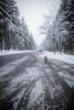 HM2A7581 (ax.stoll) Tags: feldberg frankfurt taunus mountain forest snow winter winterwonderland outdoor nature dog hovawart trees street wanderlust travel