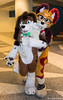 Muddy Rascal (SnapperGee) Tags: embrace friends jackal fluffy fluff adorable cute hound basset dog furcon furtherconfusion fc2018 fursuit furry cosplay anthropomorphic anthro happy hug hugging friend pup puppy ear ears paw paws costume