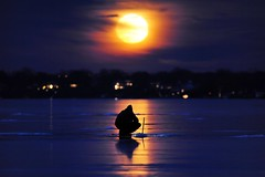 Fishing under the Super Moon (Kirby Wright) Tags: ice fisher fisherman fishing lake monona frozen winter january 2018 super moon blue orange rod reel reflection streak light rise horizon telephoto depth field madison madison365 dane county isthmus lone alone silhouette water snow cold freeze night sky cloud clouds outdoors nature nikon d700 tamron 150 600 150600 mm manfrotto