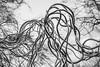 Kiss me tender (Lensjoy) Tags: lensjoy kiss sculpture wires couple lovers stainlesssteel