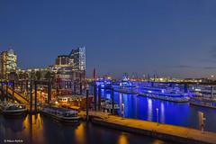 Niederhafen - 13111702 (Klaus Kehrls) Tags: hamburg hamburgerhafen niedernhafen blaueflotte elbphilharmonie schiffe blauestunde nachtaufnahme