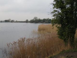 UK - Hertfordshire - Near Marsworth - Marsworth reservoir