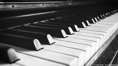 Piano (danielkoehlersphotos) Tags: piano klavier klassik blackandwhite bw pianokeys music monochrome focus canon linien makro holz infinity