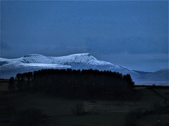 Snow capped Brecon Beacons rising up over a wood in Senghenydd, but actually over 40 miles away. (glen joe davies) Tags: wales mountain brecon beacons snow capped senghenydd wood forest