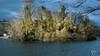 ile du parc de la tête d'or (jbroma69) Tags: parc parcdelatêtedor canon 60d 50mm amateur soleil nuage lac nature arbre water eau ile