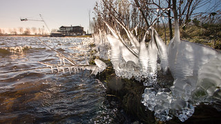 Ice Accumulates, weerwater - Almere