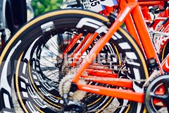 Volta ciclista a la Comunitat Valenciana Paterna - Valencia(paloma navarro)